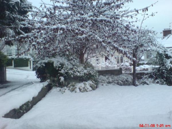 Snowy Belfast