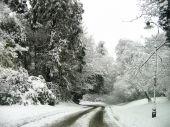 Narnia in Belfast